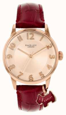 Radley Liverpool street | cinturino in pelle bordeaux | quadrante oro rosa | RY2866