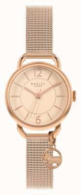 Radley | bracciale da donna in maglia di oro rosa | quadrante oro rosa | RY4528