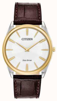 Citizen Stiletto | eco drive maschile | cinturino in pelle marrone | quadrante bianco AR3074-03A